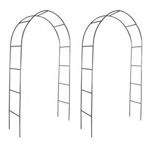 vidaXL 2X Arche de Jardin Plantes Grimpante Terrasse Patio Arceau à Rosiers