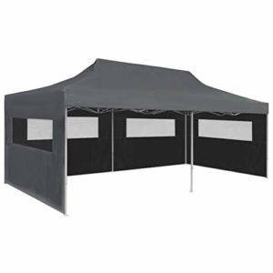 vidaXL Tente de Réception Pliable avec Parois 3×6 m Anthracite Chapiteau