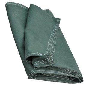 Bâche bâche Auvent écran Solaire résistant à la Pluie cryptage Plastique Toile de Coton bâche bâche imperméable Heavy Duty Jardin Camping étanche à l'humidité Vert (Color : 3X4M)