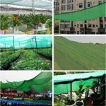 Anuo – Toile solaire rectangulaire 80 % en tissu avec œillets – Pour serre et niche, Polyéthylène, Vert, 3x4m/9x12ft