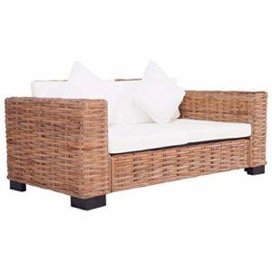 Tidyard Canapé de Jardin à 2 Places en Rotin Naturel Style Moderne – Durable et Solide 157 X 80 X 67 cm